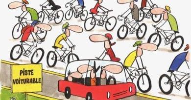 vélo économie locale